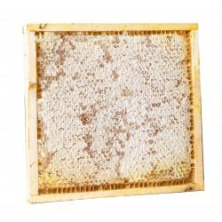 2 favi di miele di fiori (ca. 1 kg per favo) - quadro