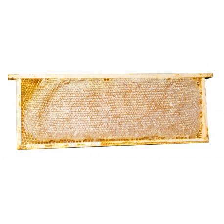 2 favi di miele di fiori ca. 2,2kg