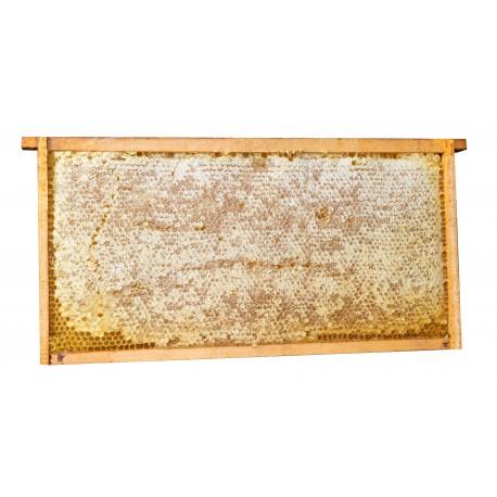 2 favi di miele di fiori ca. 2,5kg